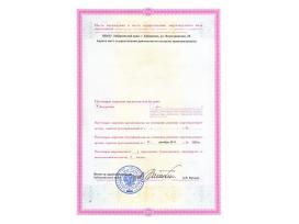 Лицензия на осуществление медицинской деятельности стр 2